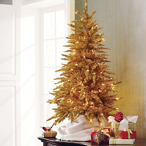 Comparing Christmas tree prices – Soul Survivor