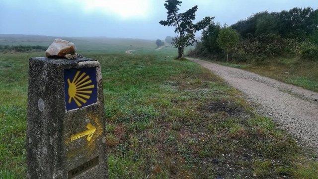 Journeys, Road Trips, Treks and Pilgrimages